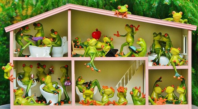 žabí domek